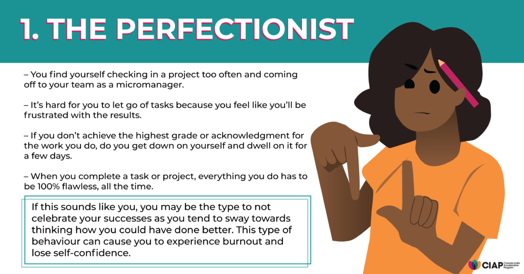 The Perfectionist competence type